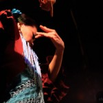 flamenco_gallery